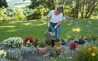 Great Weather for Gardening!